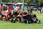 RUGBY PREVIEW Round 10