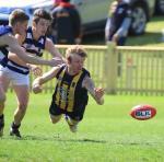 2018 Hunter Haval Black Diamond AFL Round 10 Preview